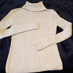 Variegated Gray knit turtleneck sweater